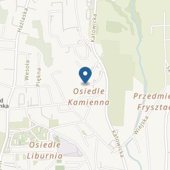 """Niepubliczne Przedszkole Twórcze """"Totu"""" z Oddziałami Integracyjnymi w Cieszynie na mapie"""