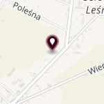 """Niepubliczne Przedszkole """"Muminki"""" z Oddziałami Integracyjnymi w Piotrkowie Trybunalskim na mapie"""