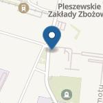 """Publiczne Przedszkole nr 3 """"Słoneczne"""" w Pleszewie na mapie"""