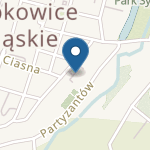 Przedszkole Specjalne w Specjalnym Ośrodku Szkolno-Wychowawczym im. Janusza Korczaka w Ząbkowicach Śląskich na mapie