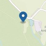 Punkt Przedszkolny w Budach Głogowskich na mapie