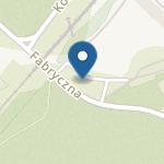 Niepubliczne Przedszkole Integracyjne Kraina Montessori w Czarnej Białostockiej na mapie